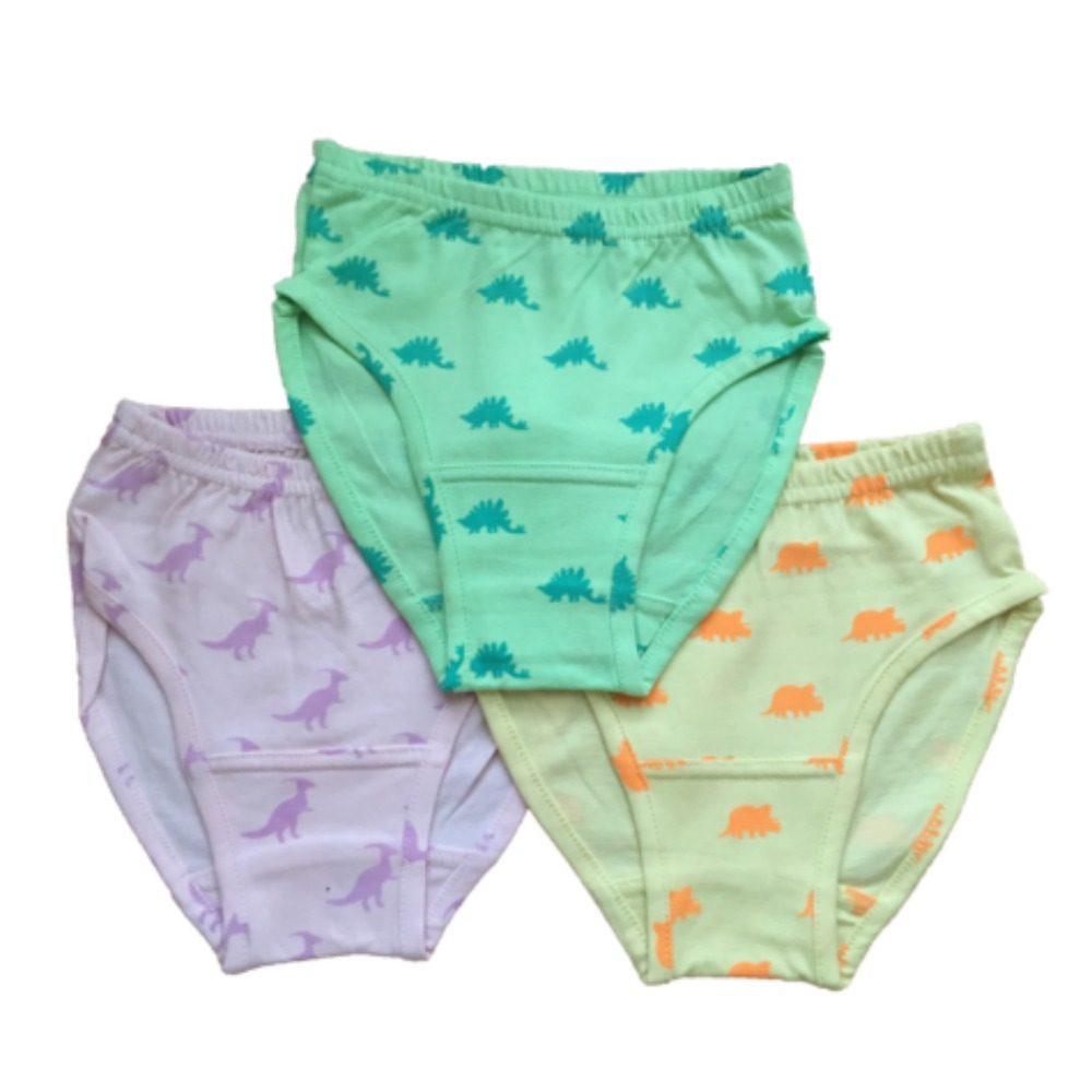 Dinosaur All-Over-Print Organic Cotton Underwear – 6-Pack